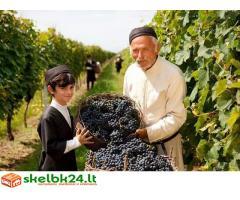 Ieškome distributorių gruziniškam vynui, chachios bei tabako gaminiams