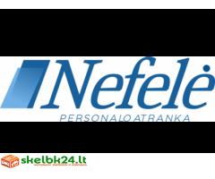 Profesionalios personalo paieškos ir atrankos paslaugos įmonėms